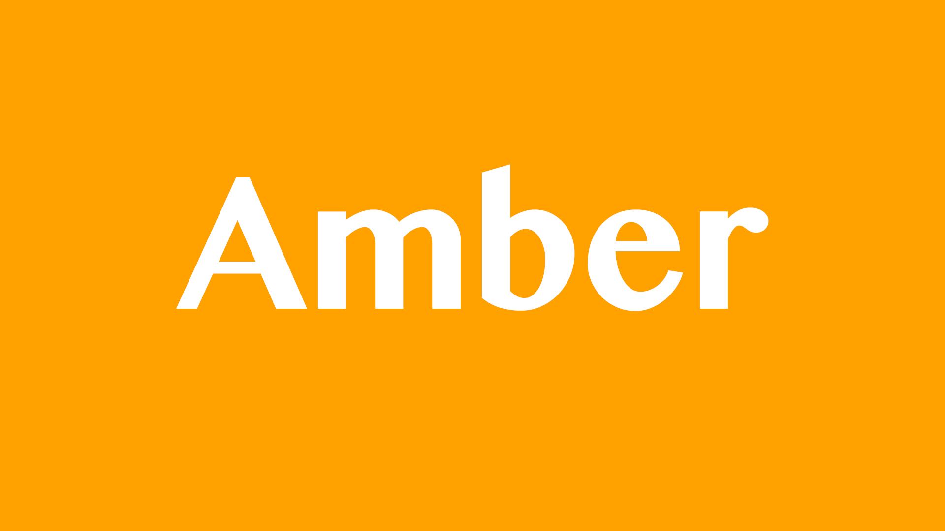 Amber Program