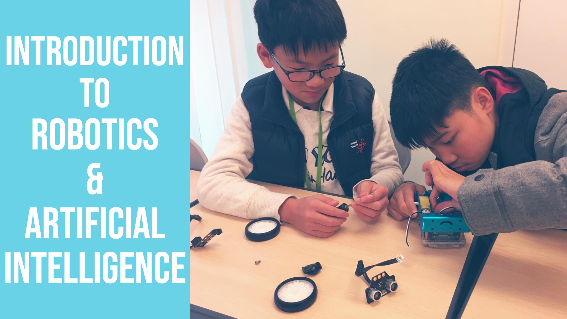 Introduction to Robotics and AI